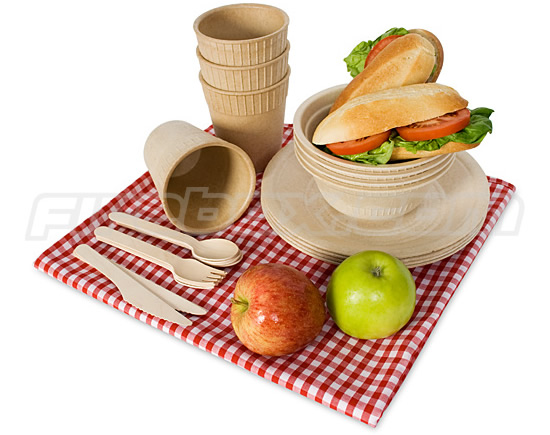 BioDegradeable Picnic Plates and Utensils