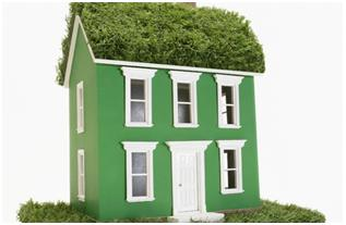 Eco-housing- The demand of the day