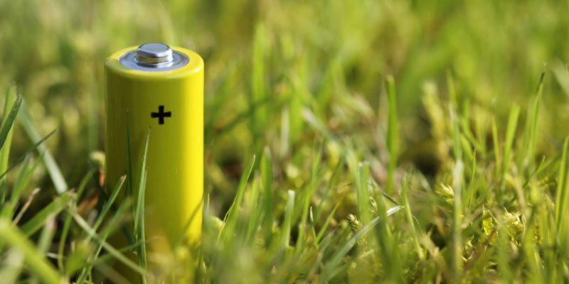 Green Battery Powered from By a Plant Extract
