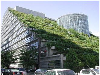 Green roofing specification and standards