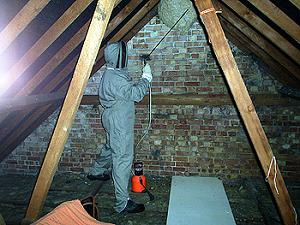 Environmentally Conscious Pest Control Service