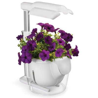 Indoor garden envirogadget for Indoor gardening gadgets