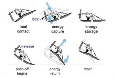 Kinetic Energy Recycling Artificial Foot