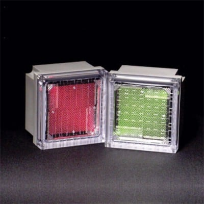 Solar Powered LED Paver Light By Solar Cynergy
