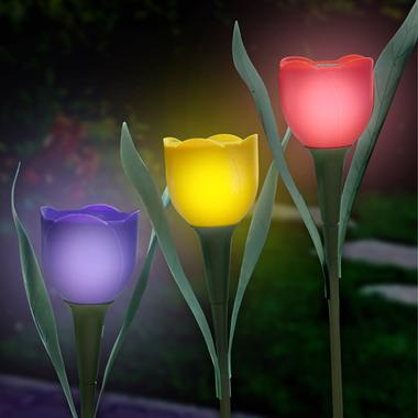 Solar Powered Tulips