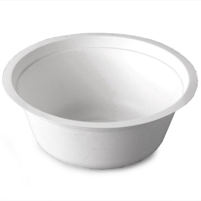 Biopac Sugarcane Disposable Bowls