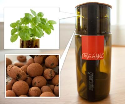 Organic Herb Grow Bottles