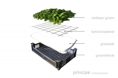 Eat House - Edible And Sustainable House Concept