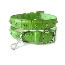 Green Dog Collars