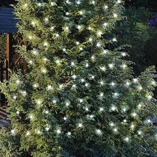 Save Energy  Use Solar Lights This Christmas
