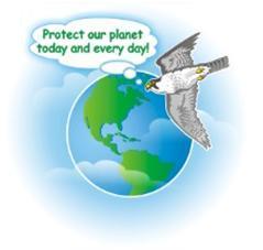 slow down carbon emissions