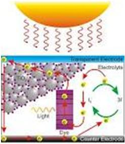 Dye-Sensitized Solar Cell